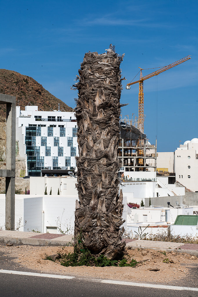 Andalusien, Spanien 2009